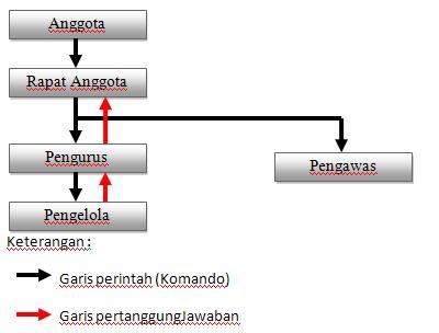 Struktur Organisasi Koperasi